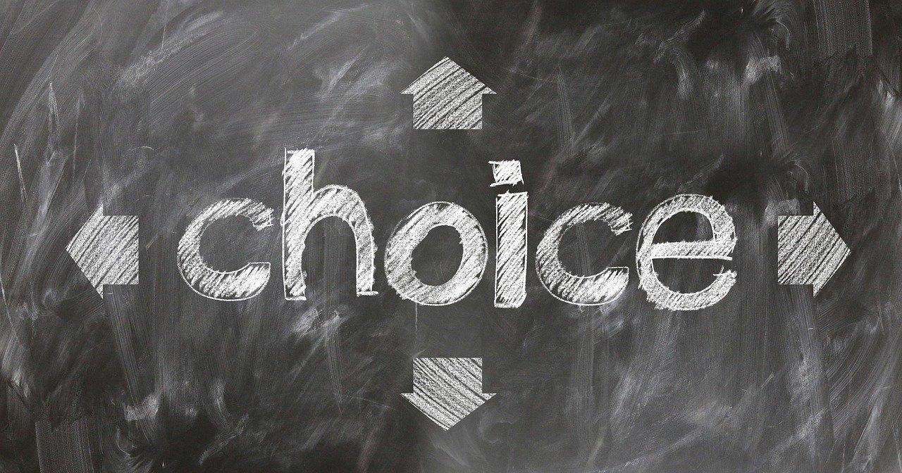 Choice Select Decide Decision Vote  - geralt / Pixabay